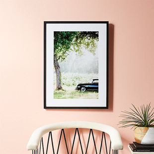 Afternoon Sun with Black Frame