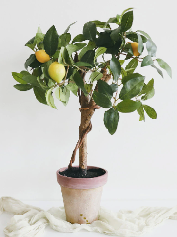 """Artificial Potted Plant Topiary with Lemons - 22"""" Tall"""