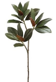 """Artificial Magnolia Leaf Spray in Dark Green - 35"""" Tall"""