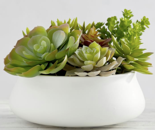 Faux Potted Succulent in Ceramic Bowl
