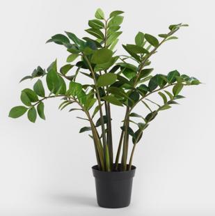 Medium Faux Zamioculcas Plant