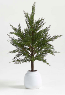 """Faux Potted Cypress Tree 24"""""""