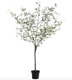 Faux Potted Olive Trees