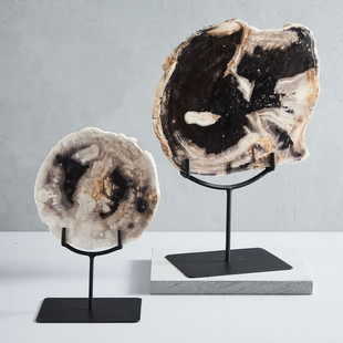 Petrified Wood Object on Stand