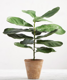 Faux Potted Fiddle Leaf Houseplant