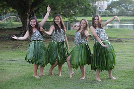 Hula Lessons Project Hawai'i, Inc. .JPG