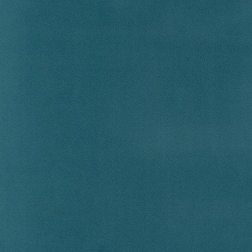 ATHENA BLUE-CANARD