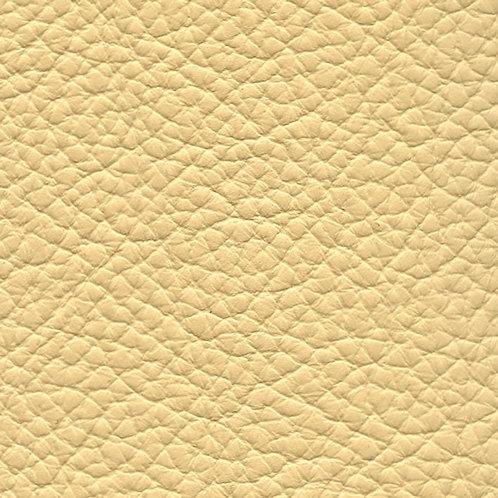 Birch Parchment