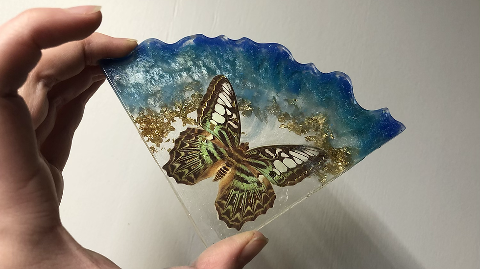Blue Butterfly Coaster Set🦋