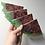 Thumbnail: Watermelon Coaster Set 🍉
