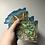 Thumbnail: Blue Butterfly Coaster Set🦋