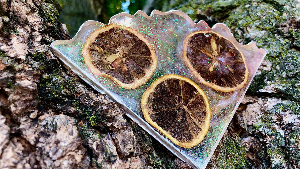 Whole Lemon Slice Lemonade Coaster Set