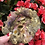 Thumbnail: Flower Skull Tray/Dish💀🌸
