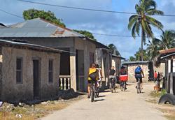 Tours and activities in Zanzibar