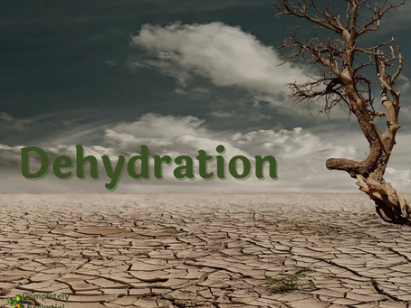 Dehydration - What you need to know
