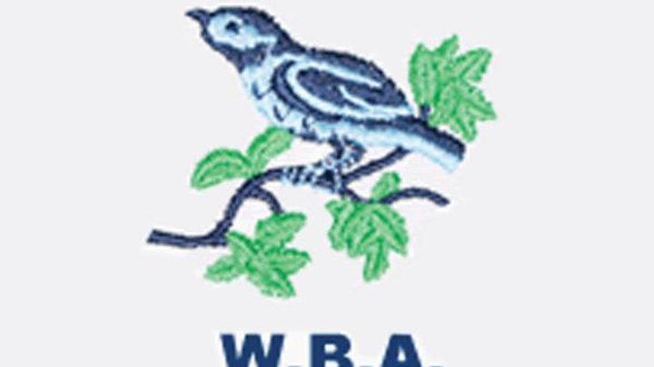 *WEST BROMWICH ALBION 1 v CHELSEA 2 1965/66 League Division 1*