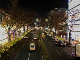表参道の静かなライトアップ