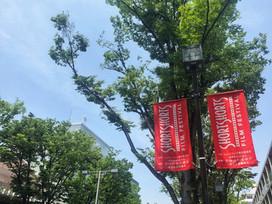 【SSFF & ASIA】映画祭開催中