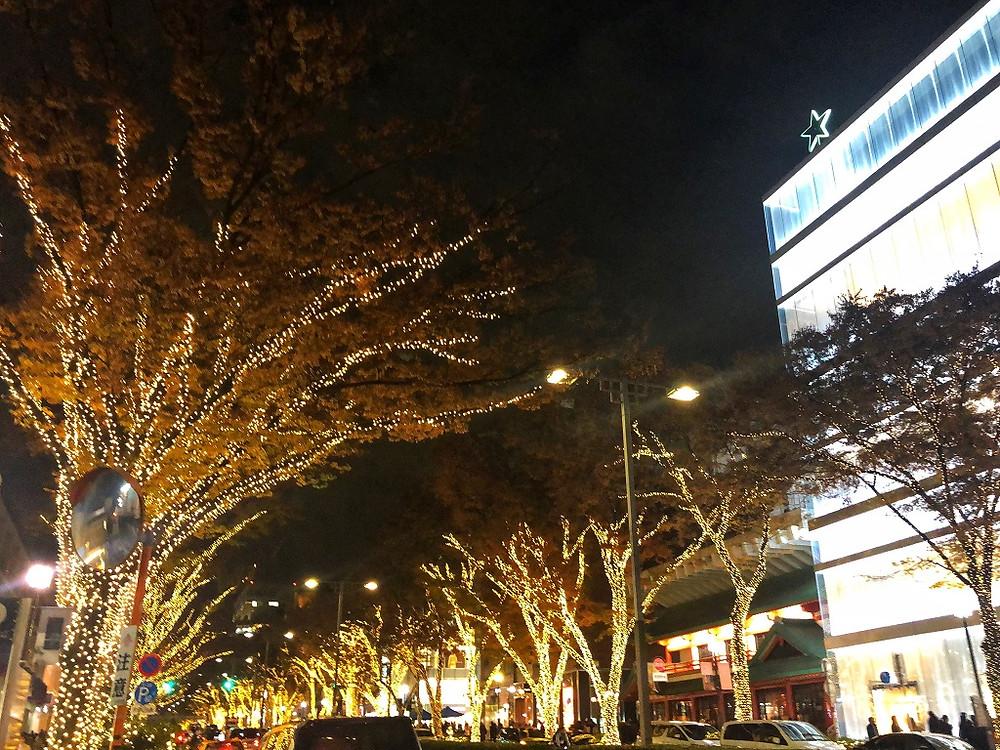 オプティシァンロイド ロイド メガネ 原宿 表参道 イルミネーション