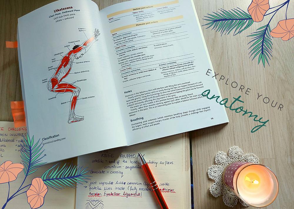 yoga anatomy book, explore your anatomy