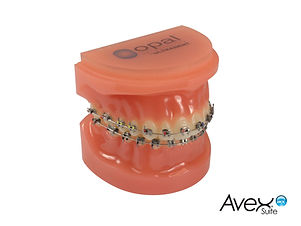 Avex Suite MX Brackets-01.jpg