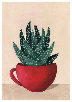 Crasa en taza roja
