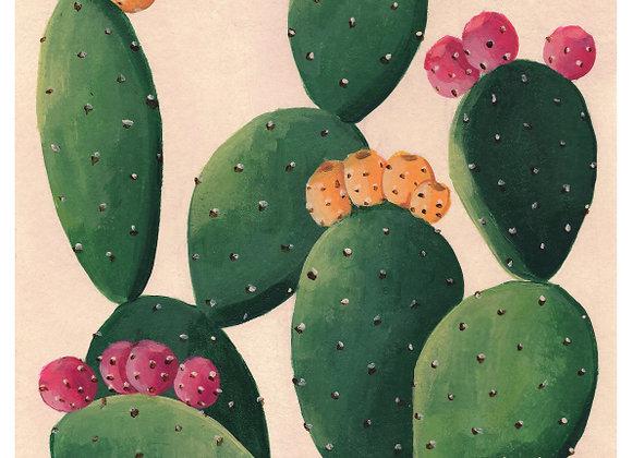Cactus con higos