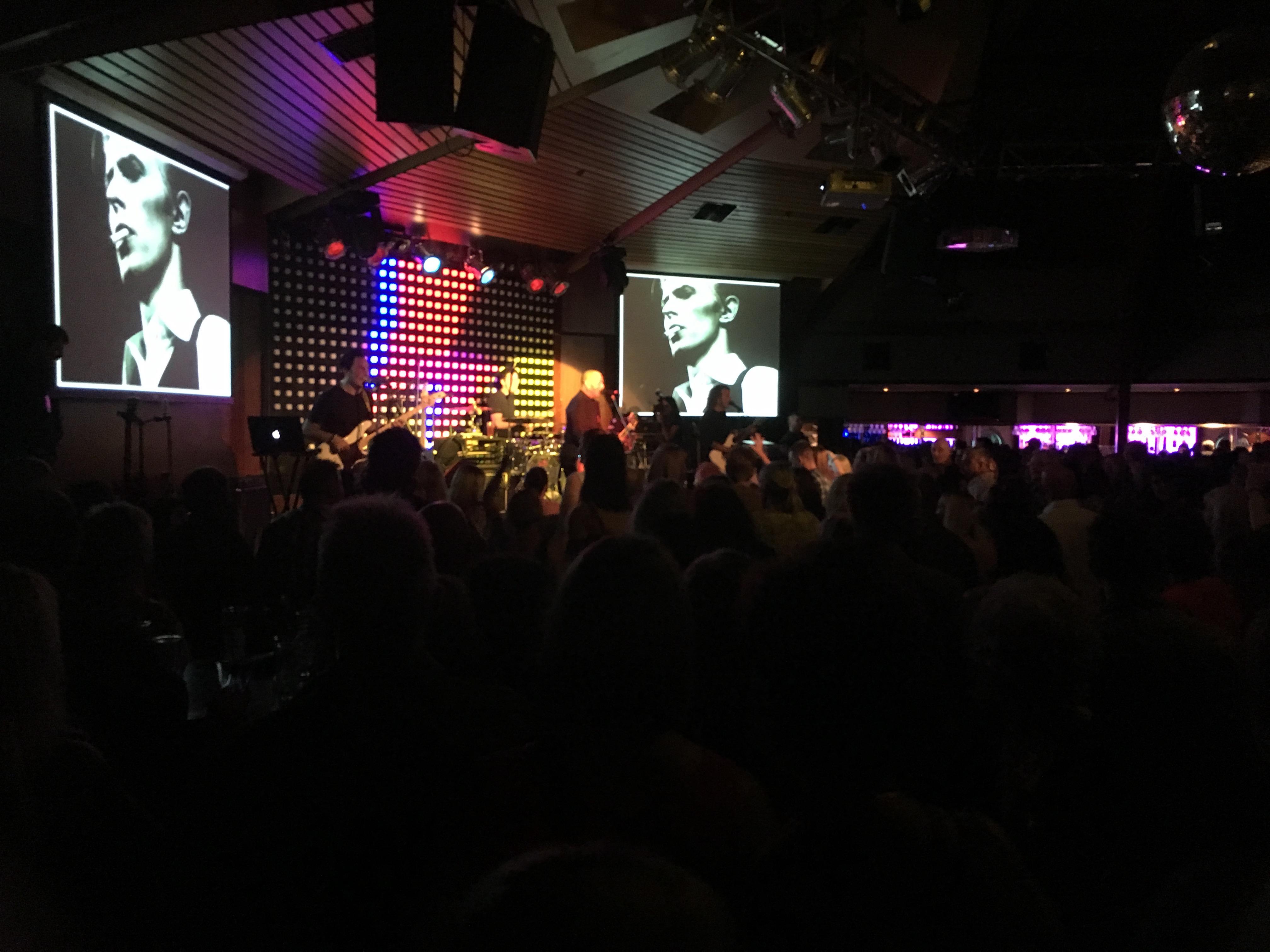 Bowie Tribute Show