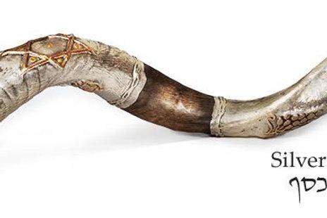 Silver Designed Kudu Shofar - KS022