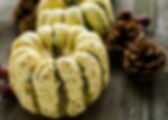 454122-Sweet-Dumpling-Squash-Photo-via-B