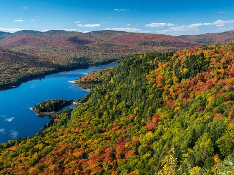 Pour de bonnes photos d'automne
