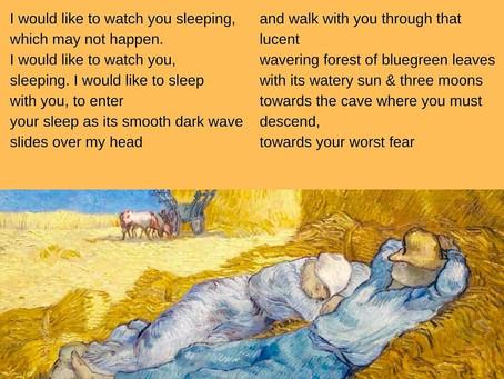 variations on the word sleep - Margaret atwood