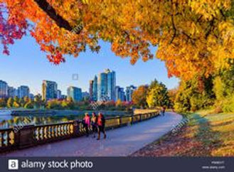 Vancouver wix pic 867051b6bcf91d9b36ab6f