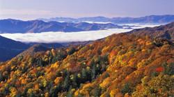 Great Smoky Mountain North Carolina.