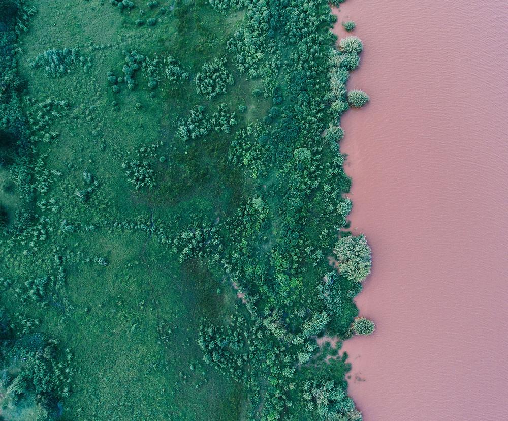 syntolkning: blick från ovan, över grönska och rosa hav