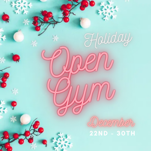 HOLIDAY OPEN GYMS
