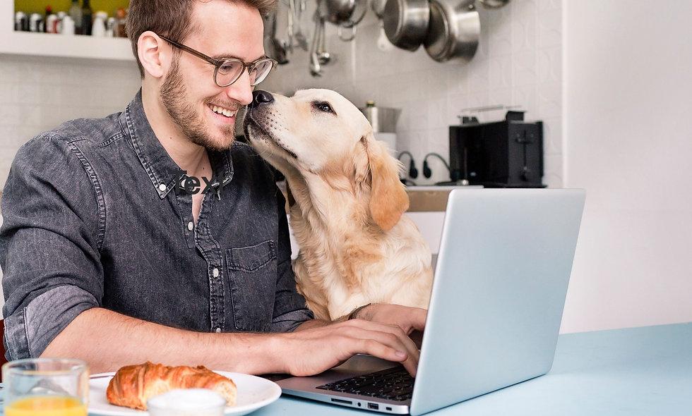 Ein Mann sitzt vor seinem Laptop und frühstckt während er sich live online sprachlich weiterbildet. Sein Hund sitzt neben ihm