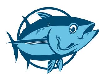 Setor de pescados se posiciona contra medida do governo federal