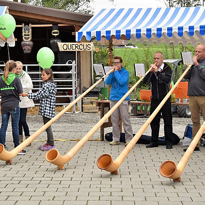 10 Jahre Darco Schmid Gartenpflege GmbH