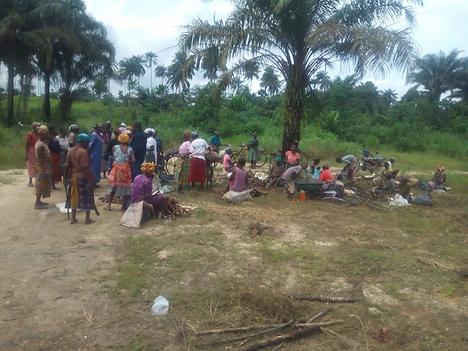 Widows receiving harvest.png