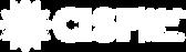 Logo_CISF_H_BN.png