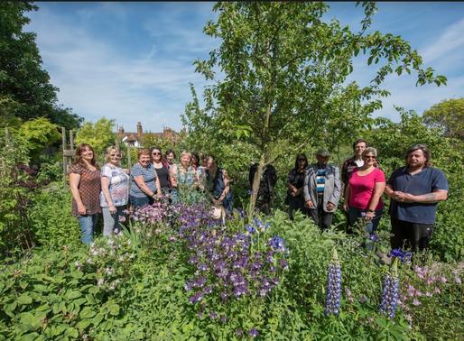 Faversham Physic Garden: One of Faversham's Secret Treasures