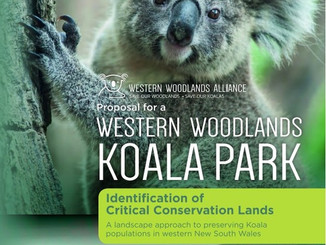 Greens Support Proposed Koala Park