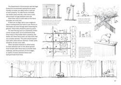 koala-land-report-nov2014-page-047