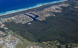 Identified Koala Habitat Sees Supermarket Proposal Withdrawn
