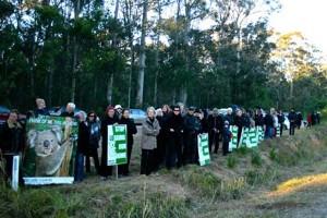 koala protest