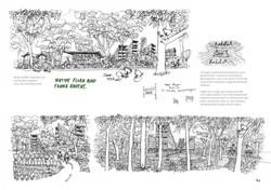 koala-land-report-nov2014-page-084
