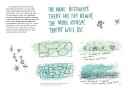 koala-land-report-nov2014-page-013