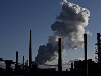 Queensland Environmental Policy Brief
