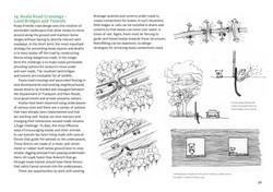 koala-land-report-nov2014-page-056